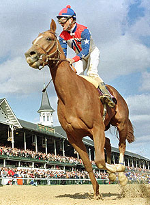 Arazi wins the 1991 Breeders' Cup juvenile at Churchill Downs.