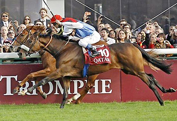 Solemia (foreground) wins the 2012 Qatar Prix de l'Arc de Triomphe.
