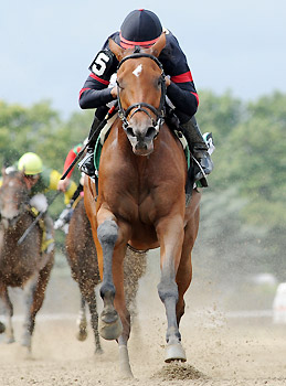Awesome Feather runs away with the Nasty Storm Stakes at Belmont Park.