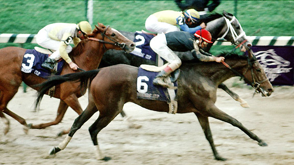 Personal Ensign wins 1988 Breeders' Cup Distaff by nose over Winning Colors.
