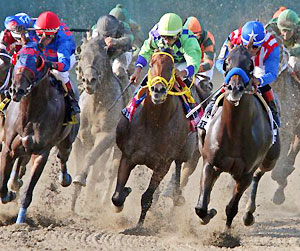 Bayern runs to victory in the 2014 Haskell Invitational.