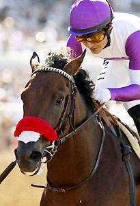 Nyquist wins the 2015 Best Pal Stakes.