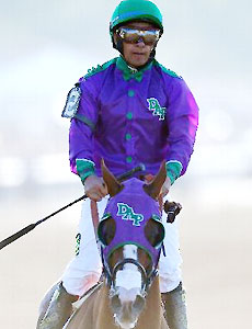 California Chrome after the 146th Belmont Stakes.