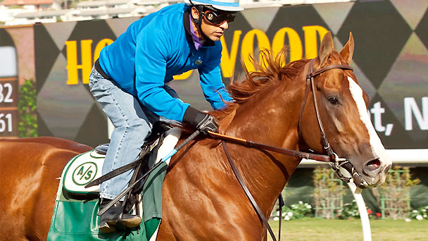 California Chrome works for the Hollywood Derby