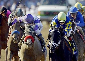 Shanghai Bobby outruns He's Had Enough to win the 2012 Breeders' Cup Juvenile.