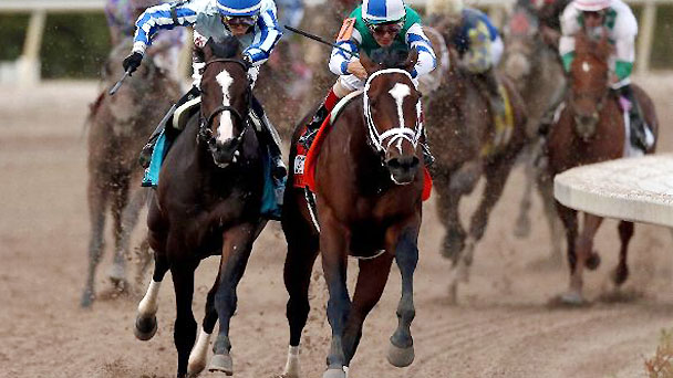 Upstart, left, and Materiality lead the field out of turn four during the Florida Derby.