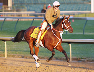 Larry Jones on Horse of the Year Havre de Grace.