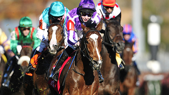 St Nicholas Abbey took the 2011 Breeders' Cup Turf under 18-year-old jockey Joseph O'Brien.