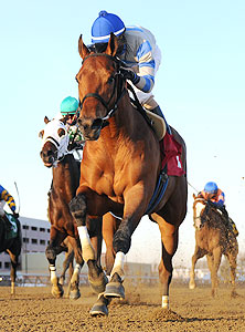 Noble Moon wins the 2014 Jerome Stakes.