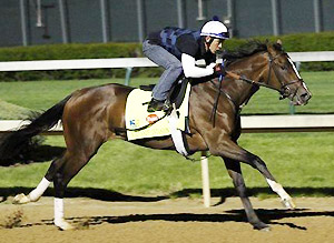 Javier Herrara works Normandy Invasion for the 138th Kentucky Derby.