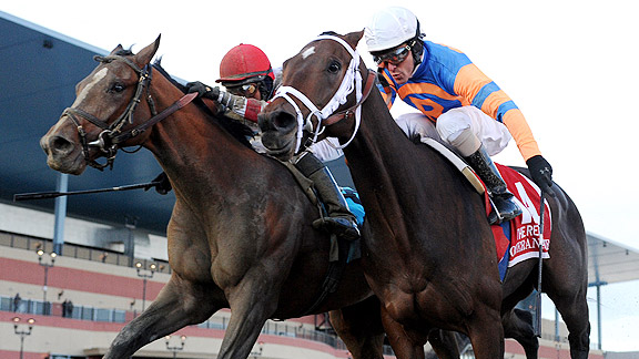 Overanalyze, right, and Normandy Invasion battle in the 2012 Remsen Stakes.