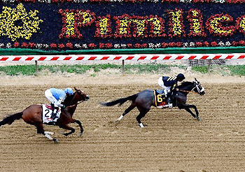 Oxbow crosses the wire at Pimlico for the victory in the 138th Preakness Stakes.