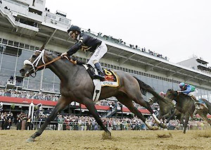Oxbow wins the 138th Preakness Stakes.