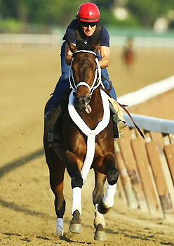 Belmont contender Ride On Curlin works at Belmont Stakes.