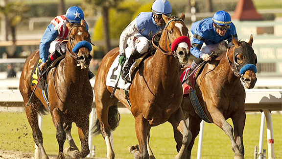 Goldencents wins the 2013 Sham Stakes at Santa Anita Park.