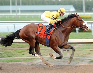 Union Rags and jockey Julien Leparoux win the Feb. 26 Fountain of Youth.