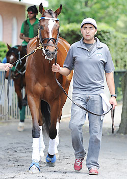 The filly Untapable will face 3-year-old colts in the Haskell Invitational.