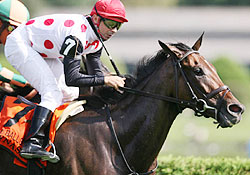 Dynaslew gives trainer Seth Benzel his first Grade 2 victory.