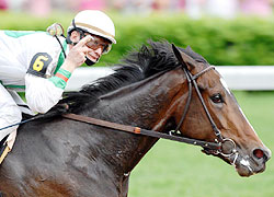 Calvin Borel and Rachel Alexandra win the 134th running of the Preakness Stakes.