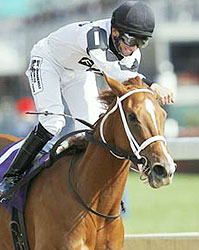 Rene Douglas, aboard Dreaming of Anna, captures the 2006 Breeders' Cup Juvenile Fillies.