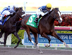Soaring Empire beats Rule to the wire in the 2011 Hal's Hope at Gulfstream Park.