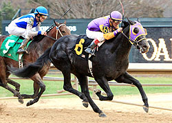 J P's Gusto finishes behind Archarcharch in the February 21 Southwest Stakes at Oaklawn Park.