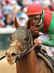 John Velazquez and Animal Kingdom