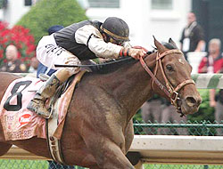Mine That Bird, with Calvin Borel up, wins the 2009 Kentucky Derby.
