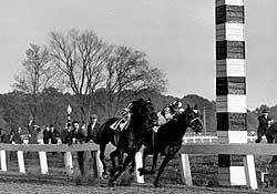 Seabiscuit (inside) and War Admiral battle in their legendary duel.