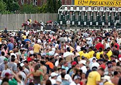 Infield fans watch the start of Preakness 132 at Pimlico Race Course in Baltimore, Md.