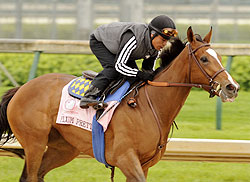 Plum Pretty works at Churchill Downs in May of 2011.
