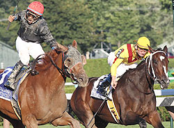 Persistently (left) caught Rachel Alexandra at the wire on Sunday.