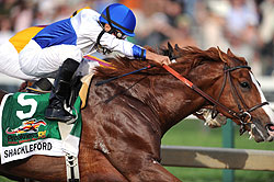 Shackleford takes the 2011 Preakness Stakes.