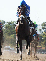 Alan Garcia guides Girolamo to victory in the Vosburgh at Belmont Park.