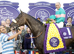 Zenyatta, with Mike Smith up, gathers in the winner's circle after winning the 2008 Breeders' Cup Ladies' Classic.