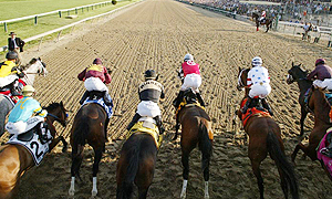 Horses leave the gates during the 2008 Preakness Stakes.