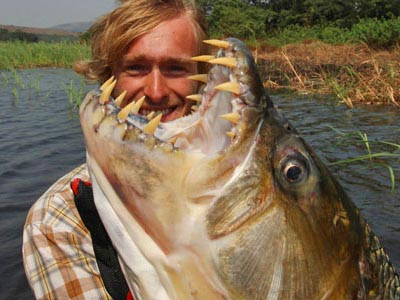 Did you see the epi of River Monsters on Sunday with the Goliath Tigerfish?