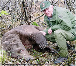 timothy treadwell death audio biography