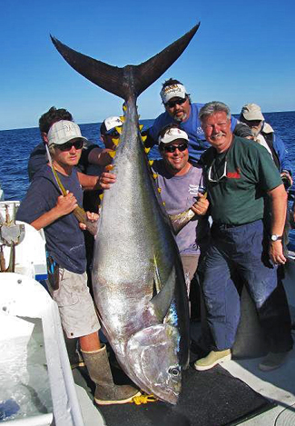 igfa world record yellowfin tuna