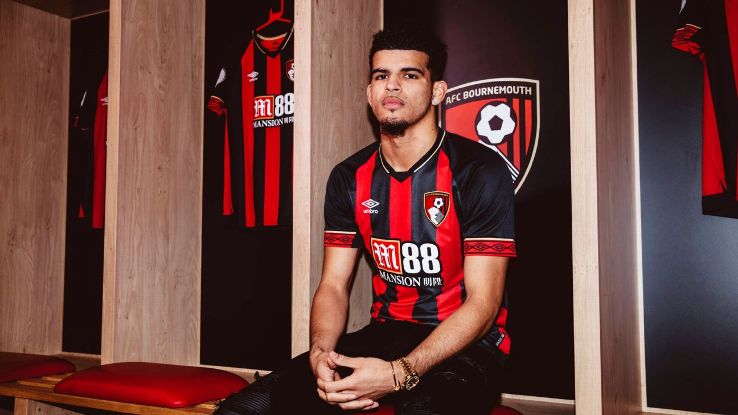 Bournemouth unveil new signing Dominic Solanke
