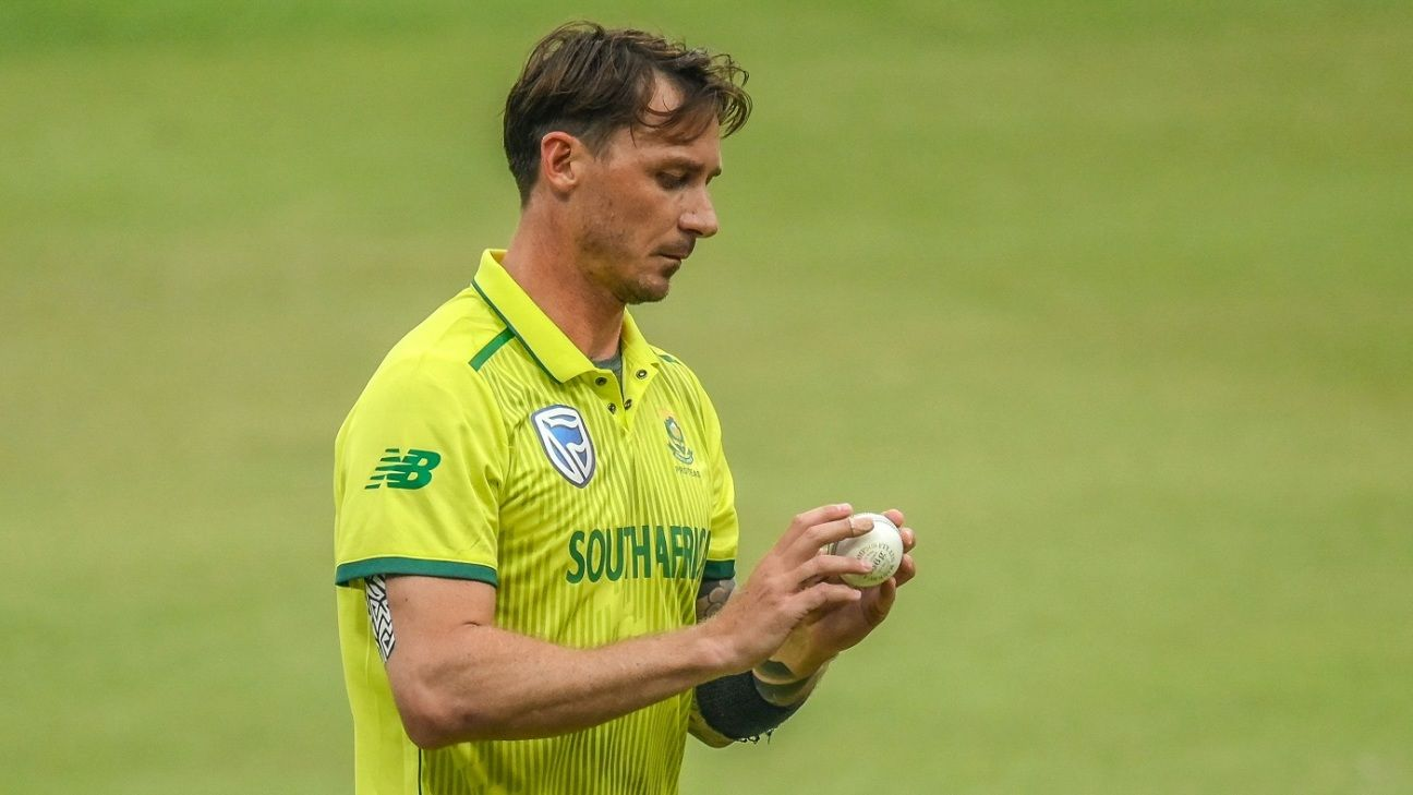 Don't have to be too hard on ourselves - Dale Steyn