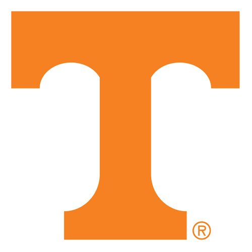 Image result for tennessee vols