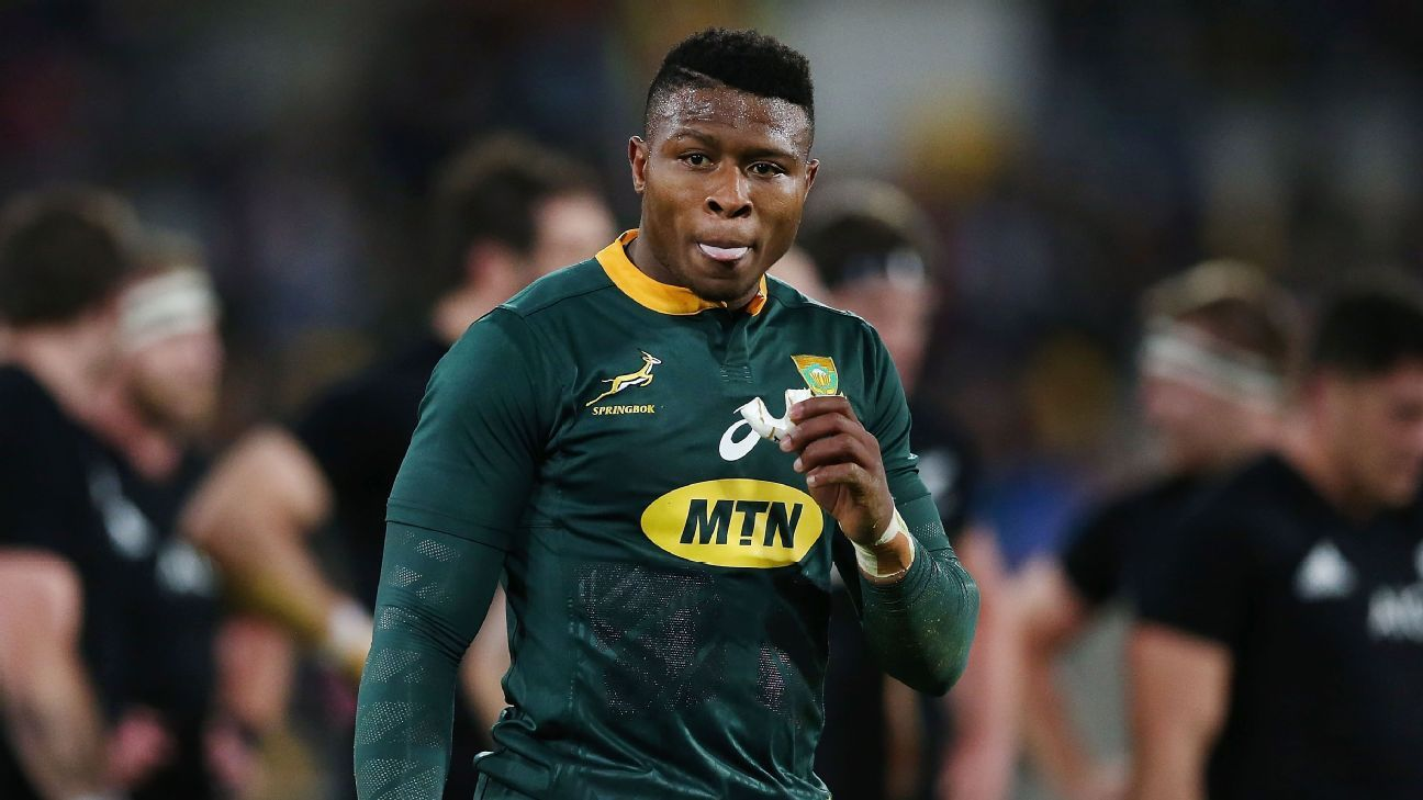 Springboks' Aphiwe Dyanti ruled out of Wallabies Test