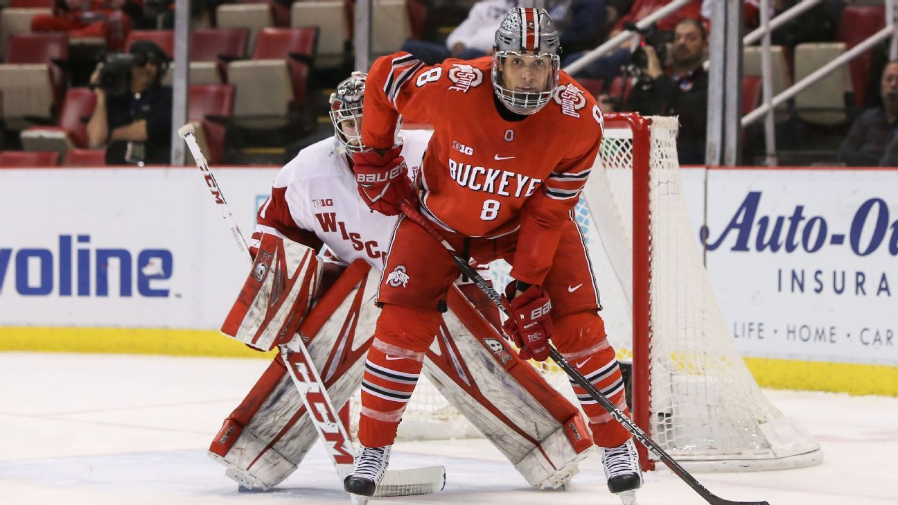 914b8b01d6f8f5 NCAA - Top men's college hockey teams and players to watch, Frozen Four  picks and Hobey Baker watch - 2018-19