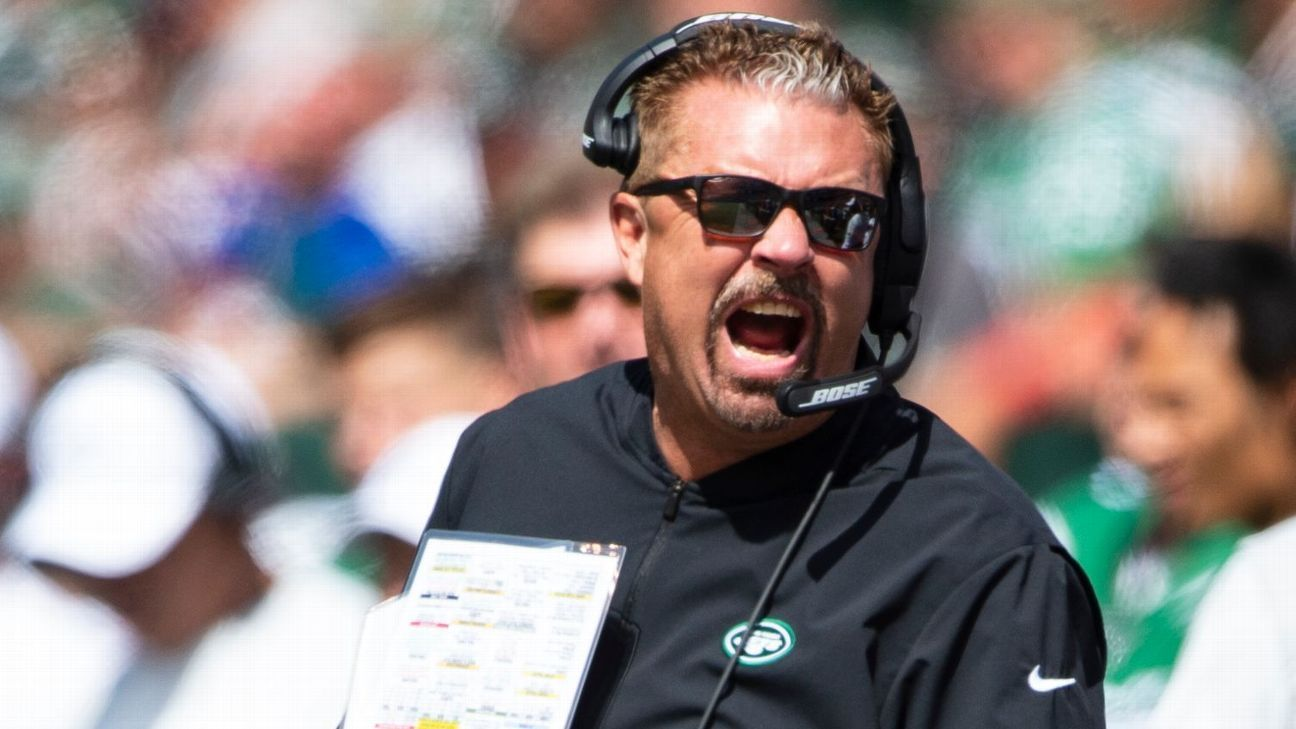 Inside Gregg Williams' world: Wolves, lions and payback to Browns