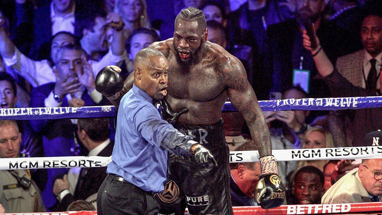 Should Deontay Wilder's corner have thrown in the towel?