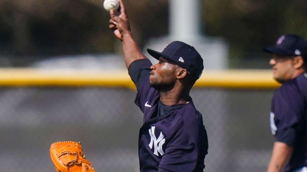New York Yankees' Domingo German apologizes for domestic incident