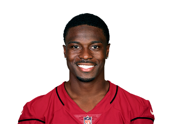 https://a.espncdn.com/i/headshots/nfl/players/full/13983.png