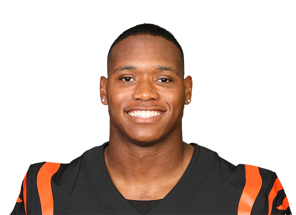 https://a.espncdn.com/i/headshots/nfl/players/full/3125356.png