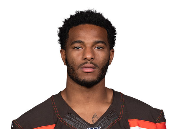https://a.espncdn.com/i/headshots/nfl/players/full/4339173.png